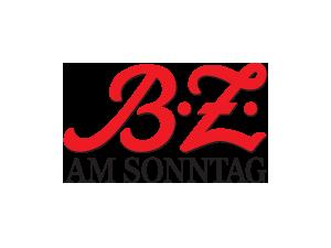 BZS_300x225px